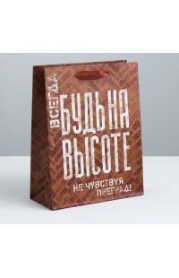 3680960 Подарочный пакет 26 х 30х 9 см
